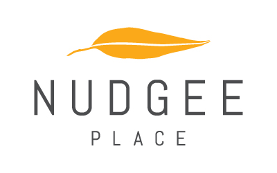 Land For Sale Nudgee Place