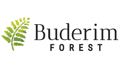 Land For Sale Buderim Forest
